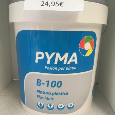 Painting PYMA Plastic Mate Plus Indoor